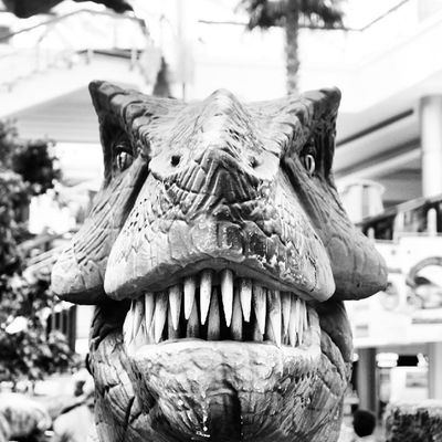 Dinosaur model at the Dinosaurs display area. Red_sea_mall Redseamall redsea mall. jeddah saudiarabia saudi_arabia. Taken by my sonyalpha dslr a57. ديناصور ديناصورات ردسي مول جدة السعودية