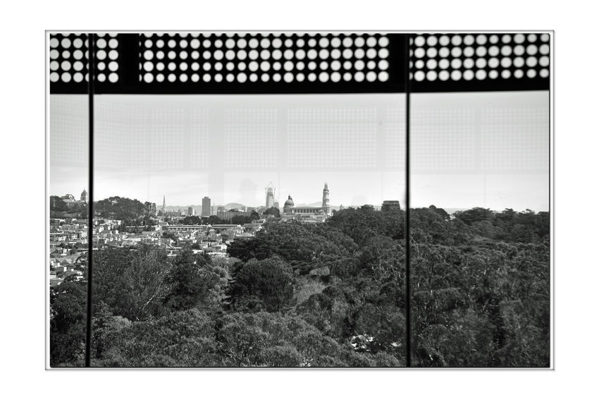 DeYoung Museum _ Observation Tower 7 San Francisco CA🇺🇸 Golden Gate Park 144 Ft. Observation Tower New Building  Built 2005 Replaced 1895 Original Building Damaged By 1989 Loma Prieta Earthquake Architecture Modern Observation Deck 8th Flr Scenic Lookout Cityscape Nature In The City Vistas Panoramic Views Landscape Monochrome_Photography Monochrome Black & White Black & White Photography Black And White Black And White Collection