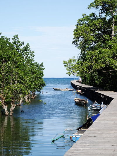 hidden dock Dock Boats⛵️ Pedestrian Path Wood - Material Nature Photography Hidden Places Kendari Southeastsulawesi Beautiful View Blue Sky Bluewater Water Reflections