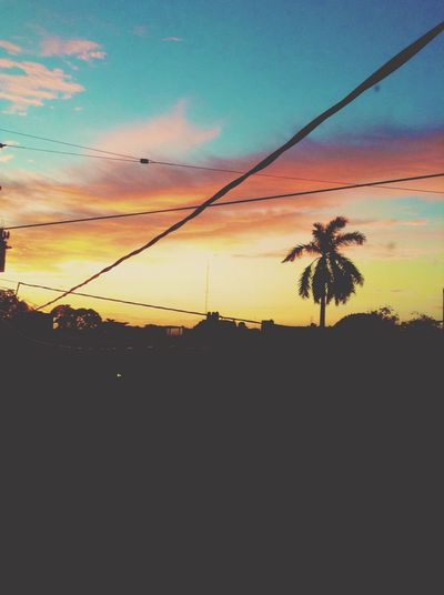 Only México Clouds And Sky Amanecer Beautifu Awesome #sun #palmtree First Eyeem Photo