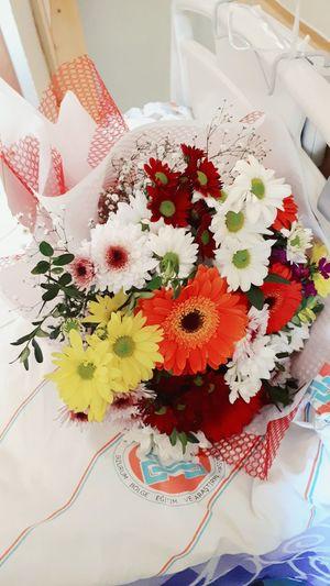 Flowers My Friends Ill Nursingservice Nursing Day Colorful My Life Very Happy Day Taking Photos İs Arkadaslarim Hasta Ziyareti Tesekkurler 😍❤️ Nature