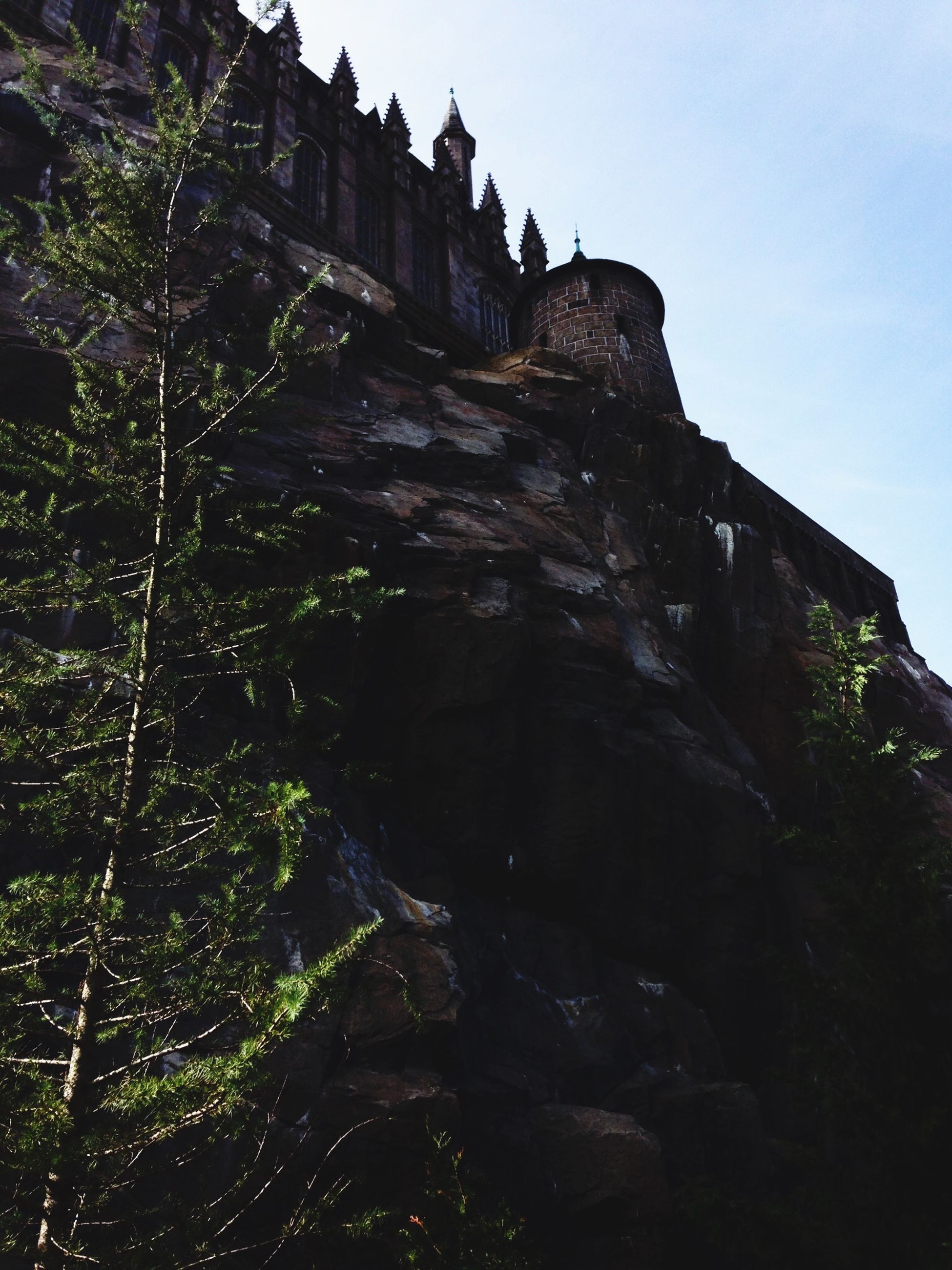 built structure, architecture, low angle view, building exterior, clear sky, sky, tree, rock - object, rock formation, plant, nature, day, outdoors, sunlight, cliff, steps, growth, tranquility, old ruin, no people