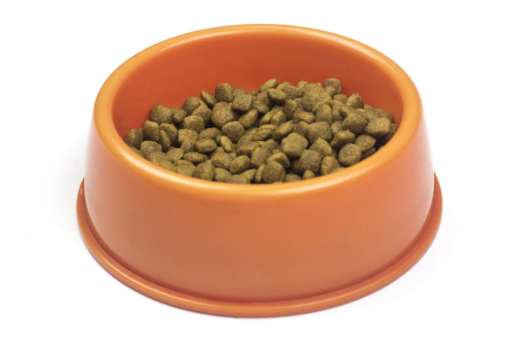 A bowl filled with kibble for cats and dogs Kibble Food Dog Food Cat Food Dry Food Dry Animal Food Bowl Red Bowl Isolated White Background White Background Bowl Close-up