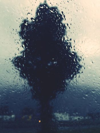 Way to italy, irschenberg,always Taking Photos raining