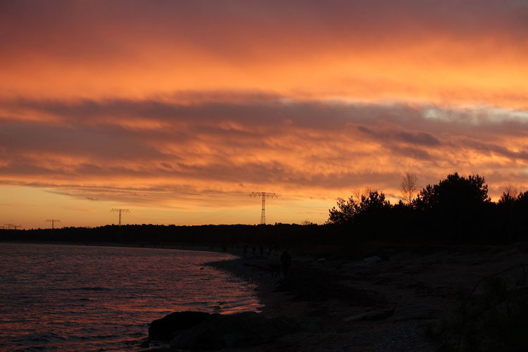 Baltic Sea Baltic Sea In Winter Beauty In Nature Cloud - Sky Day Electricity  Electricity Pylon Nature No People Orange Color Outdoors Scenics Silhouette Sky Sunset Tranquil Scene Tranquility Tree Water