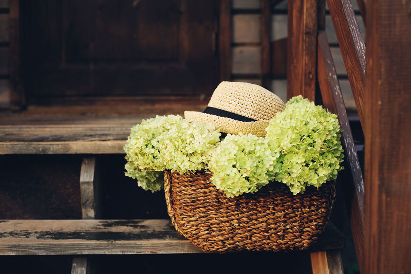 summer wooden cottage stairs with hydrangea flowers in rustic basket and gardener hat. Country life and summer vacation concept. No People Plant Nature Wood - Material Freshness Still Life Close-up Day Hydrangea Flower Garden Gardener Hobby Hat Garden Photography Stairs Country House Country Life Basket Relaxing Backyard Summer Summer Exploratorium Cottage