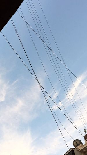 Animal Themes Animals In The Wild Cable Cloud - Sky Connection Day Electricity  Low Angle View Nature No People Outdoors Power Line  Power Supply Sky