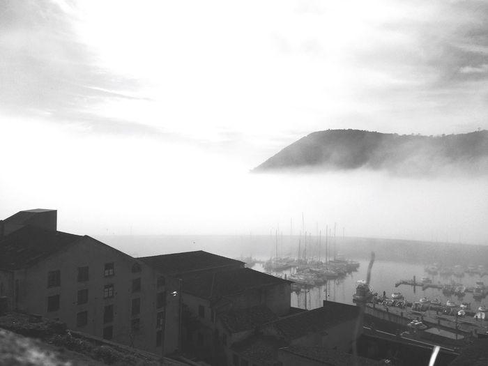 Fog Terceira Azores Portugal EyeEm LivingOnAnIsland