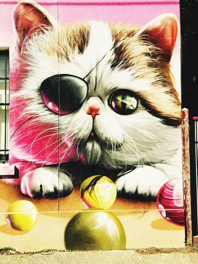 Photographic Approximation say Hello to my Pussycat ... Streetart/graffiti