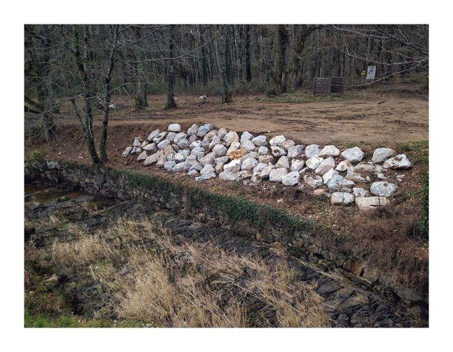 Strange stones Log Stack Timber Lumber Industry Woodpile Deforestation Large Group Of Objects
