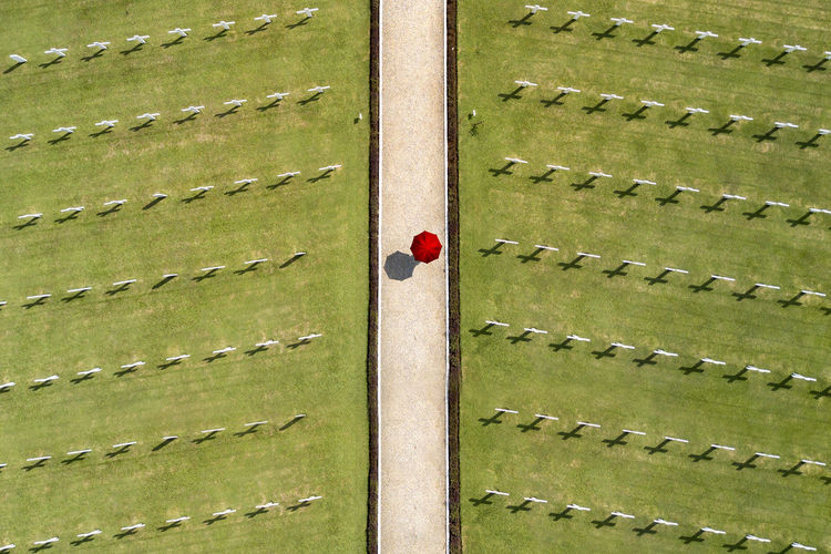 Full frame shot of wooden fence on field