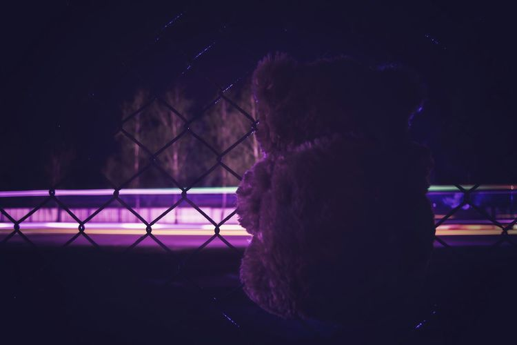 Up Close Street Photography From My Point Of View Bear Night Lights Bear In The Night Fence My View Exceptional Photographs Our Best Pics Open Edit Outdoors No People Relaxing My Mood Night Mood Blue Lights  EyeEm Best Shots Teddy Bear Teddy Selective Focus Composition