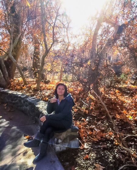 Paint The Town Yellow Been There. Montezuma Castle Arizona Autumn Leaf One Person Full Length Tree Nature Young Women Beauty Beautiful Woman Young Adult Adult Forest Scarf Outdoors One Woman Only Sunlight Sitting Day