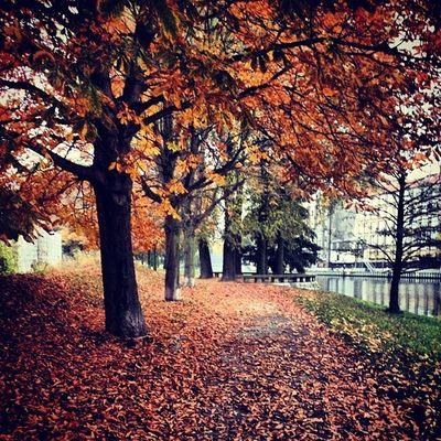 #architecture #Berlin #igersberlin #instagood #tweegram #photooftheday #follow #instamod #igers #picoftheday #instragamhub #instadaily #insta_germany #bestoftheday #igdaily #webstagram #instragramers #ig_special #igersberlin #gf_germany #all_shots #autumn Picoftheday Instamod Follow All_shots Bestoftheday Igers IGDaily Tweegram Instagood Webstagram Instadaily Architecture Igersberlin Berlin Insta_germany Gf_germany Autumn Instragramers Herbst Ig_special Photooftheday Instragamhub