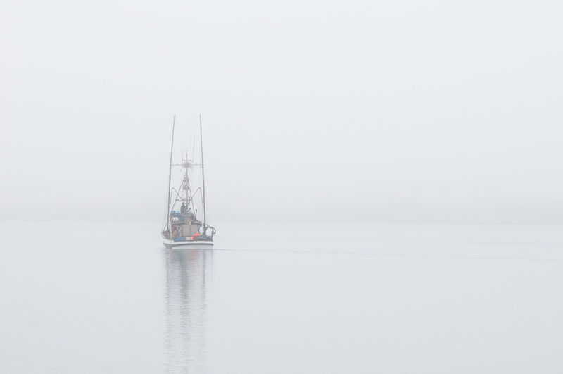 Crab boat sailing off in the am fog to catch crab along the California coast Going Fishing Jeff Sinnock Misty Morning Fog Nature Beauty In Nature Crab Boat Day Fog Foggy Foggy Morning Going To Work... Mast Monochrome Boat Nature Nautical Vessel No People Outdoors Sailboat Sailing Sea Sky Water Waterfront White Background