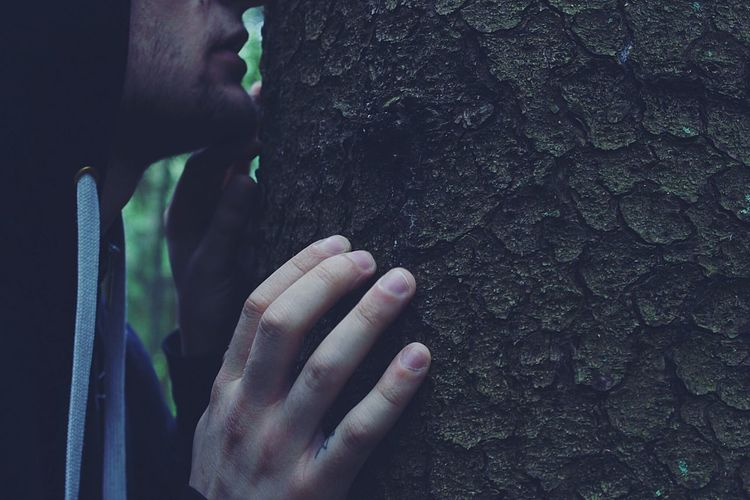 Cropped image of man touching tree trunk