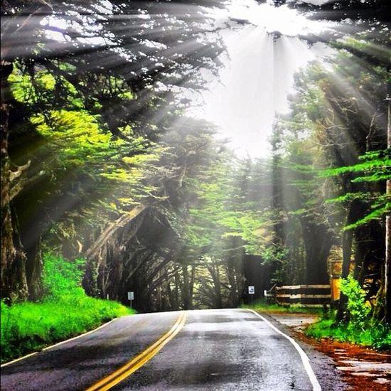 Pacific Coast Highway #highway101 #california #pacificcoast #pacificcoasthighway #honkTravel California Pacificcoast Honktravel Pacificcoasthighway Highway101