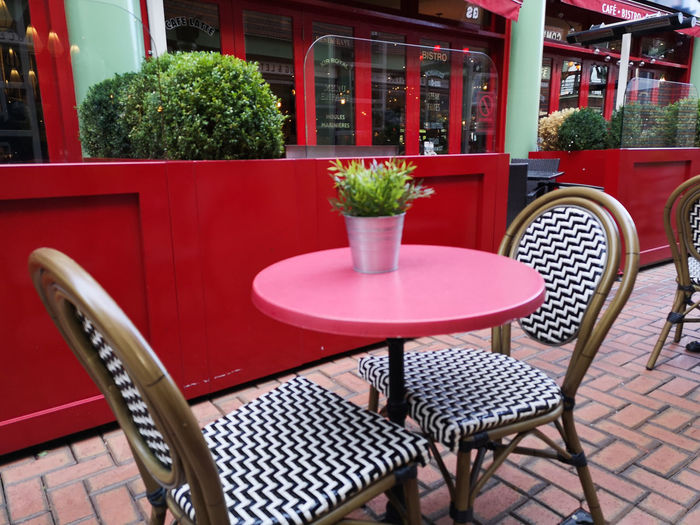 autumn days call for warm cuppas and food Still Life Red Autumn Cafe Rouge Flower Furniture Patio Place Setting Red Chair Table Cafe Potted Plant Dining Room Outdoor Cafe Capture Tomorrow