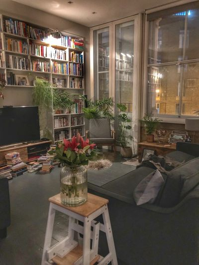 Cosy living room with bookshelves, plants and flowers EyeEmNewHere Painted Floor Bespoke Shelving Homely Cosy Home Urban Jungle Loft Apartment Home Library Den Living Room Plant Indoors  Flower No People Table Illuminated Business Seat Flowering Plant Potted Plant Home Interior Domestic Room Bookshelf Plant Indoors  Home
