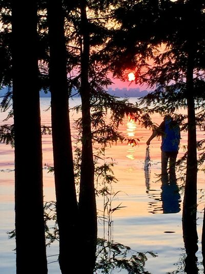 Lake Tree Real