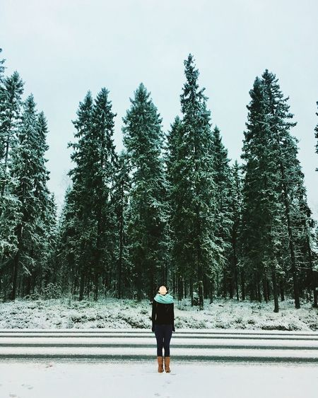 Everything you want is on the other side of Fear- Jack canfield 🌲🌲🌲🌲 Wild Free Finland Tree Plant Real People One Person Winter Full Length Snow Nature