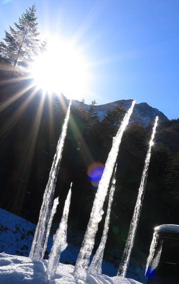 Forest Icicles Japan Landscape Lens Flare Mountains Nature Sky Snow Sunshine Winter