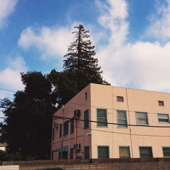 Architecture Building Exterior Tree Built Structure Sky Cloud - Sky Window No People Low Angle View Day Outdoors Nature