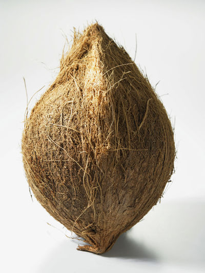 whole coconut Coconut Raw Brown Close-up Cut Out Dry Food Food And Drink Hay Healthy Eating Indoors  Nature No People Nutrition Plant Produce Single Object Still Life Straw Studio Shot Wellbeing White Background Whole