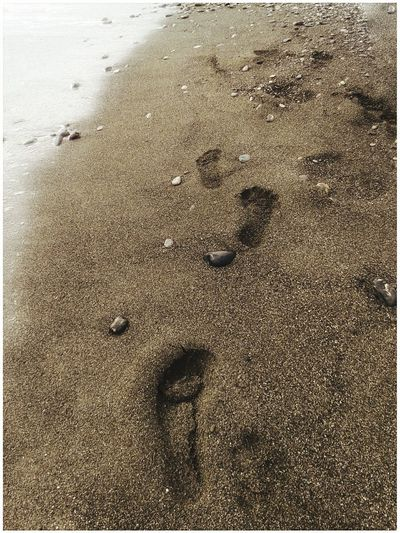 43 - 9..5 - 8.5 - 275 mm. 10102018. Impronte Smartphone Photography Mobilephotography S3 Mini Taglia Shoe Size End Of Summer Water Beach Sea Backgrounds Sand Full Frame Sunlight Sandy Beach FootPrint