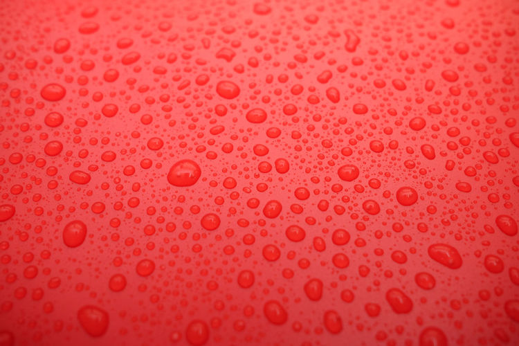 Drops of water on a color background.red toned.