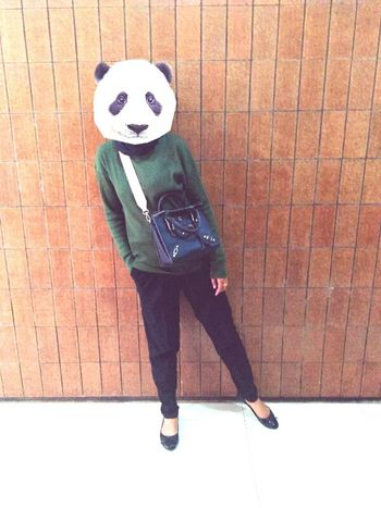 You have many face 😋 First Eyeem Photo Animal Pandas♥ Manyface Outfit Army