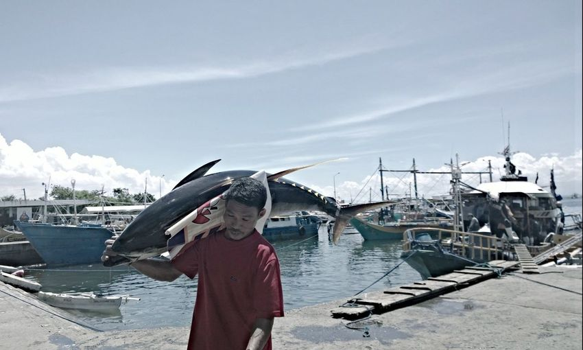 Fisherman carrying dead tuna at harbor