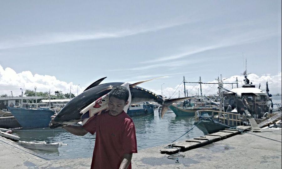 Tuna Tunafish Port Boat Hardwork Fisherman Working Hard Water Pacman Gensan