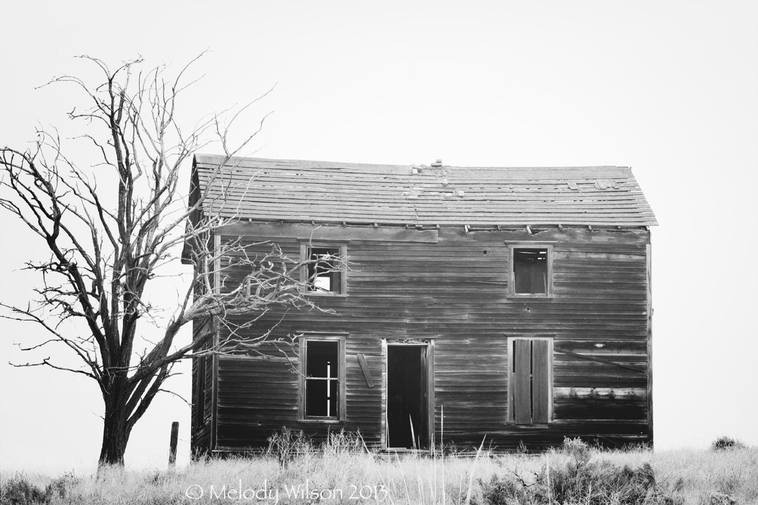 architecture, built structure, building exterior, house, abandoned, clear sky, old, window, obsolete, residential structure, damaged, tree, low angle view, run-down, day, field, bare tree, exterior, barn, sky