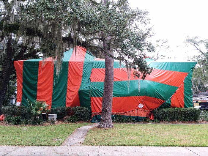 Termite tent Exterminators big tent