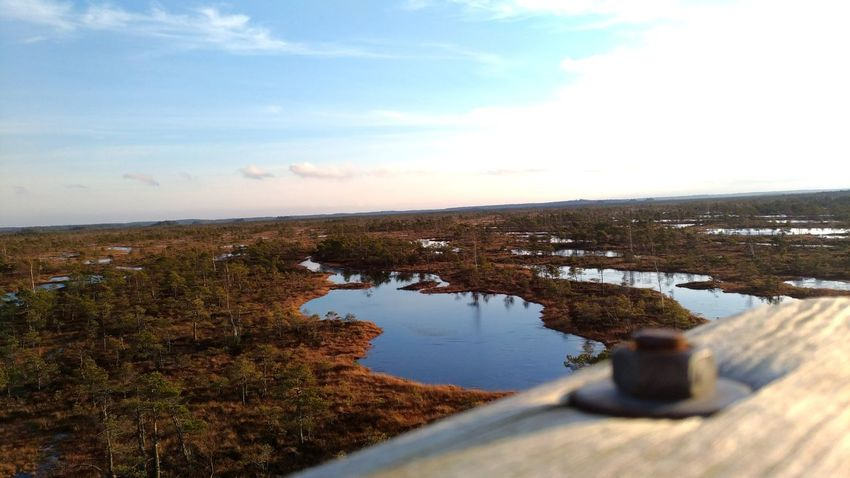Landscape Landscape_Collection Photography Nature Winter Autumn Latvia Wiev Wiev From Above Photo Photographer Trees Swamp Forest Biomes Water No People Outdoors Sky Day Lake Nature