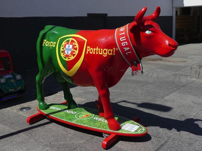 Bull in