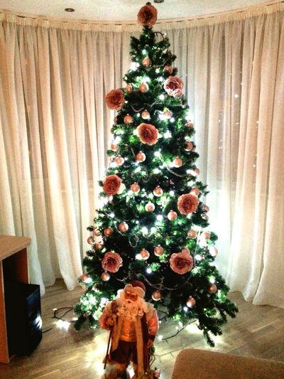 Christmas Tree Perfect Shine Bright Followforfollow Follow4follow Followback Followme Follow Taking Photos