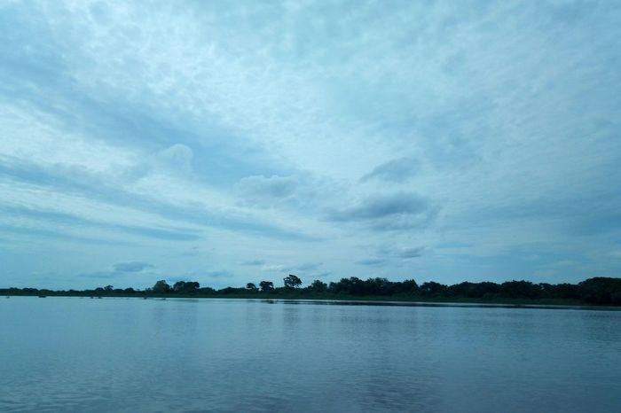 Pantanal, céu nublado EyeEm Selects Mato Grosso Do Sul Ms Brasil Pantanal Pantanal SulMatogrossense Rio Paraguai Río Paraguay Lazer Paz Water Tree Lake Blue Summer Reflection Sky Landscape Horizon Over Water Cloud - Sky Atmospheric Mood Groyne Lagoon Cumulus Moody Sky