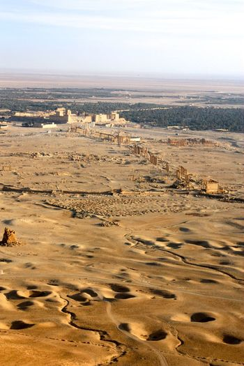 Aerial View Arid Climate Desert Beauty Geology Horizon Over Water Incidental People Ocean Outdoors Palm Tree Palmyra Physical Geography Sand Sea Shore Summer Syiarislam Top Perspective Tourist Vacations Water Wave