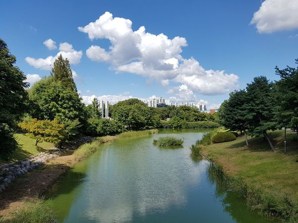 a pond in the park Pond Rest Area EyeEm Gallery Autumn Walking Alone Green Blue Blue Sky Tree Water Blue Sky Cloud - Sky