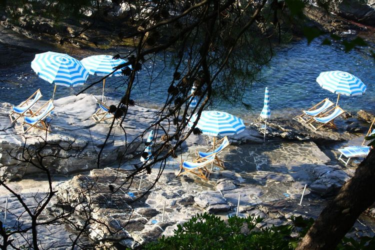 Beauty In Nature Blue Branches Day High Angle View Italia Italian Sea Italy Mare Natura Nature Nervi  No People Ombrelloni Outdoors Riverbank Rocks And Water Scenics Tranquil Scene Tranquility Beautifully Organized Tree Trunk Trees Vacations Water