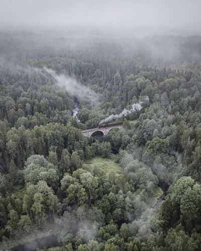 High angle view of steam engine passing the brick bridge in forest