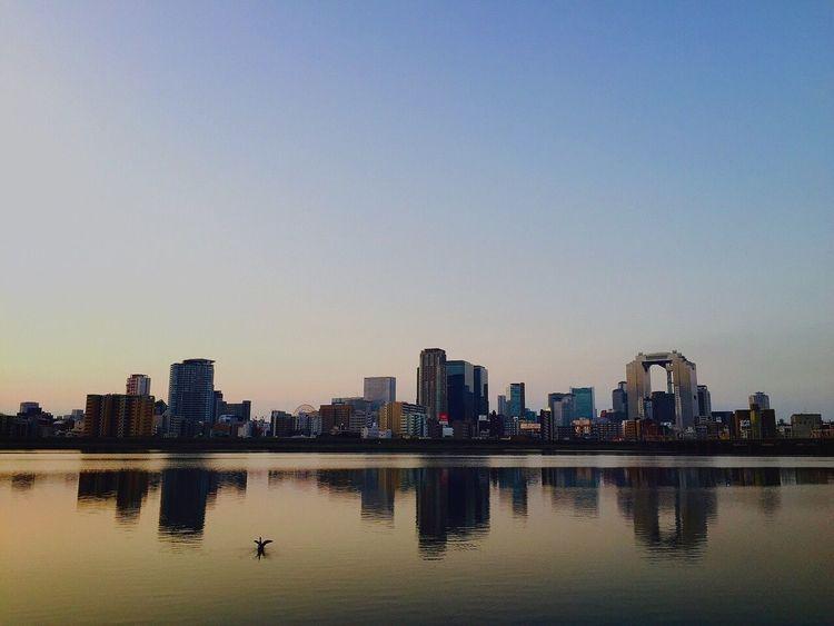 朝ランが気持ち良い。秋めいてきすこぶる嬉しい♪ Enjoying The Sun Jogging Morning Sky Cityscape Umeda Sky Building Buildings Osaka,Japan