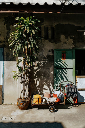 Stillife in Bangkok, Thailand Architecture Building Exterior Built Structure Building No People Transportation Plant Mode Of Transportation Day Nature House Outdoors Absence Potted Plant Land Vehicle Wall - Building Feature Sunlight Entrance Wall Growth Garage Wheel
