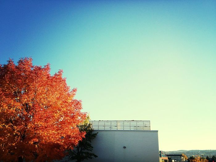 Fall is upon