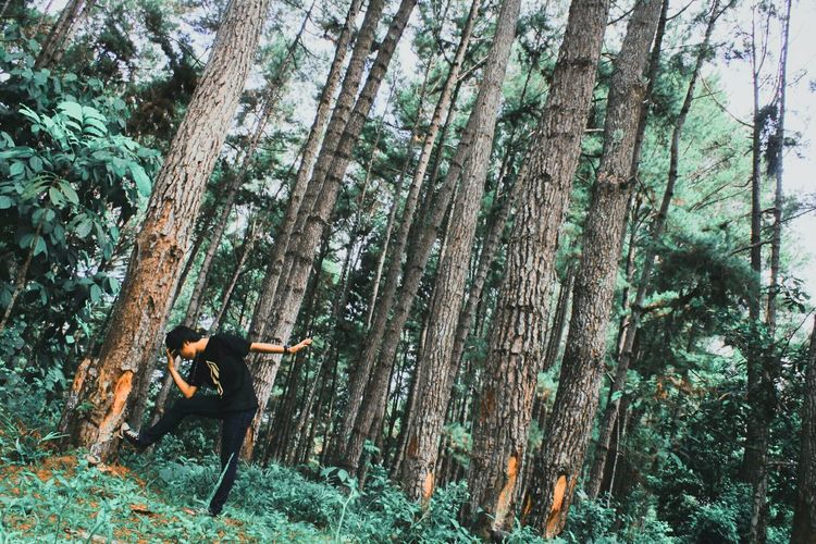Man Posing Against Trees In Forest