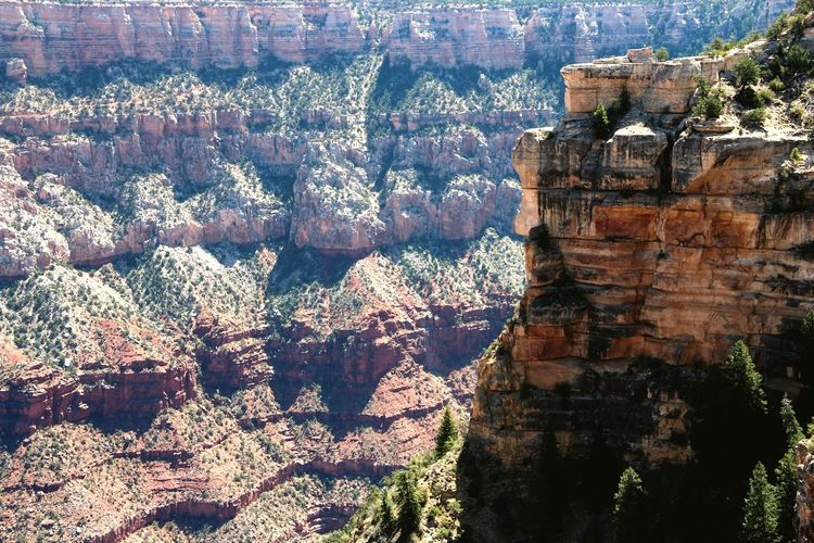 Amazing Grand Canyon Grand Canyon National Park Grand Canyon Naturelovers Nature Photography Nature_perfection Nature_ Collection  Canon600D Tranquility Geology Rock Formation CanonEOS600D