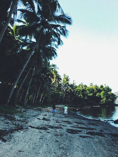 Pangasinan island. Tree Water Palm Tree Nature Sea Outdoors Day Beach Vacations Scenics Underwater Beauty In Nature Adventure People Sky Clear Sky Tranquility Nature Summer Eyeem Philippines EyeEm Nature Lover