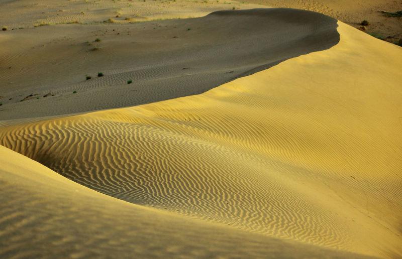 Sand Landscape Sand Dune Desert Beach Sunlight